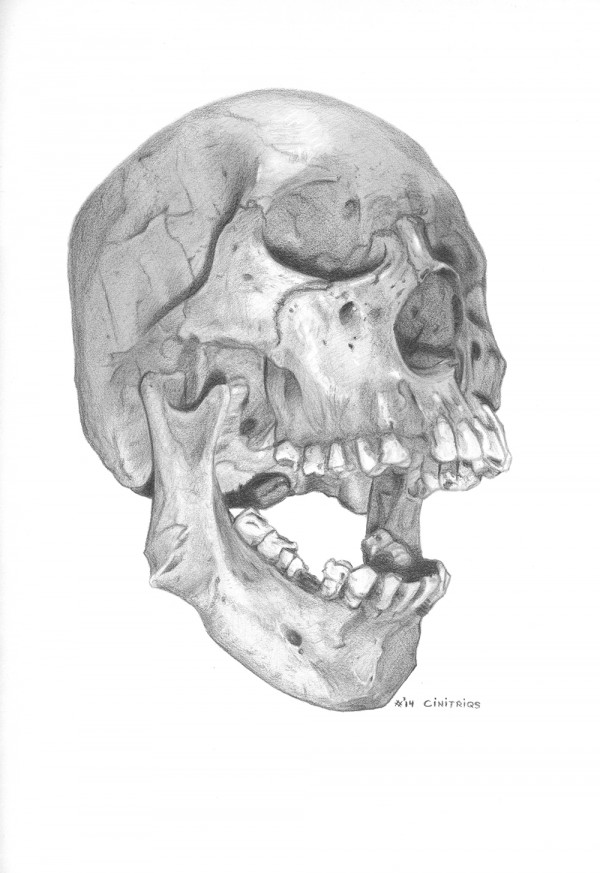 Skull-Contest_Cinitriqs_BnW