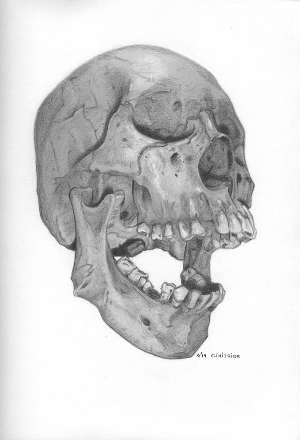 Skull-Contest_Cinitriqs_BnW_V1
