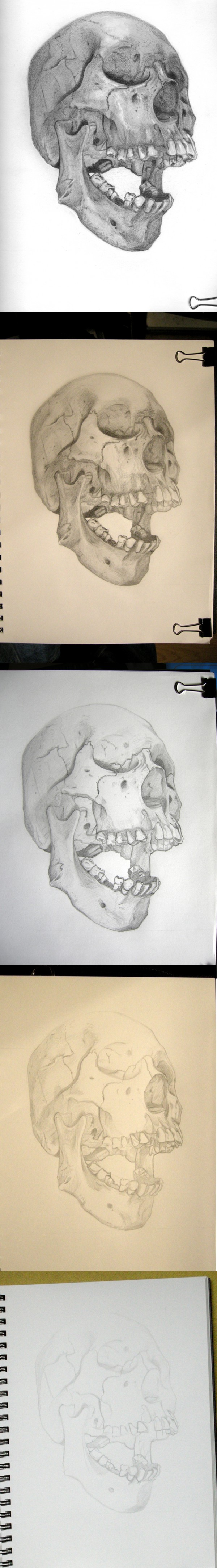Skull-Contest_WIP_Steps
