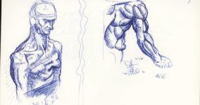 Da Vinci Studies